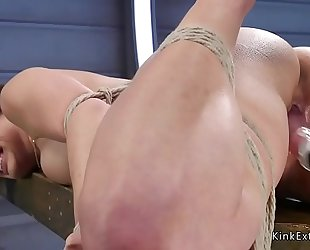 Tied up brunette hair receives fucking machine